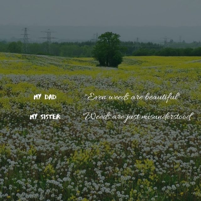 Quote about weeds